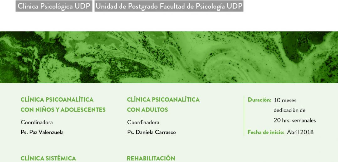 UDP_EstadiasDePerfeccionamiento_bajadas